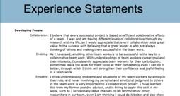 Experience Statement